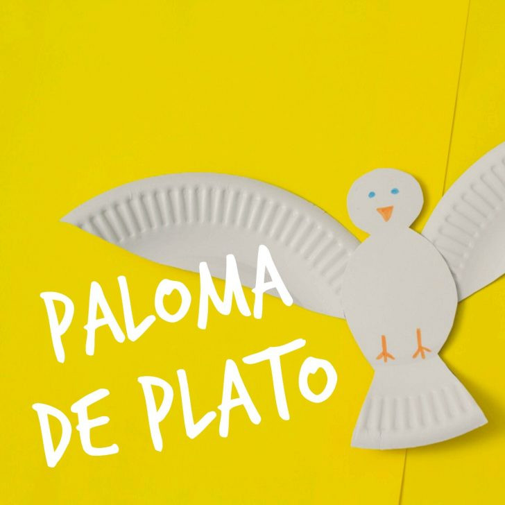 Imagen de Paloma con Plato
